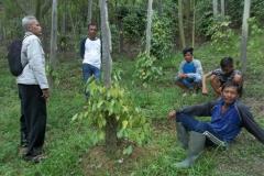 Kunjungan tim mmc ke beberapa kebun lada petani gunung seriang