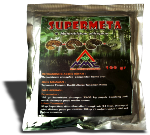 supermeta atau mosa meta, agens hayati dengan bahan aktif metharizium anisopliae