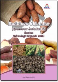 cover modul budidaya ubi jalar